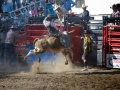 Ramona_Rodeo_0016-2013