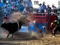Ramona_Rodeo_0021-2013